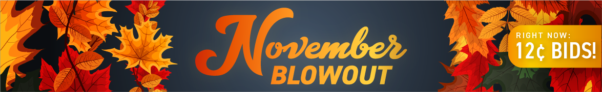 November Blowout: Bids now only 12 cents each!