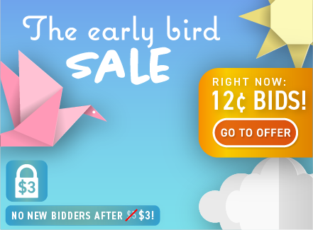 The Early Bird Sale: Buy bids for only 12 cents each!