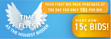 Time Flies as the Highest Bidder: Buy bids for only 15 cents each!